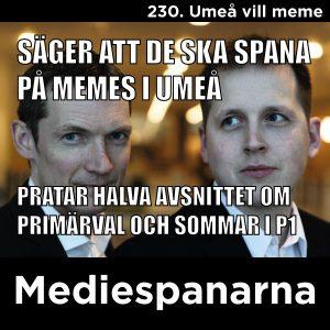 Umeå vill meme