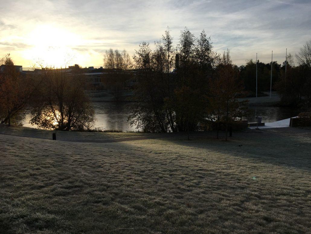 Dammen på Umeå universitets campus den 14 oktober 2016